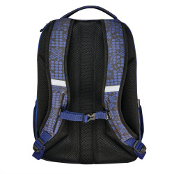 Backpack preteen04 smashed dot...