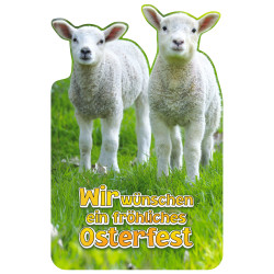 Greeting card Easter Lambs
