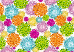 Gift wrap 2m Vibrant Flowers P...