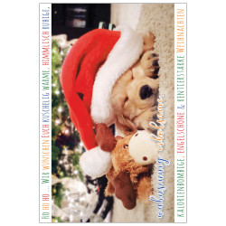 Greeting card christmas dog pu...
