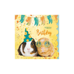 Greeting card Cuddles guinea p...