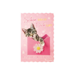 Greeting card glimmer cat / bo...