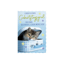 Greeting card glimmer cat/suit...