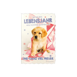 Greeting card glimmer dog